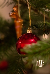 an ornament on an evergreen tree